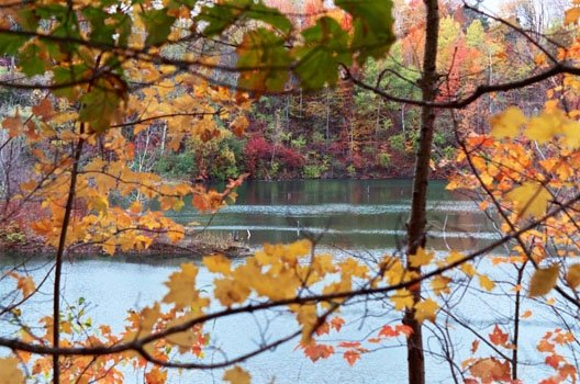 View of the Grand River in Fall