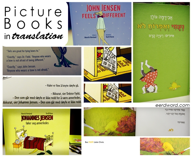 Picture books translated into English