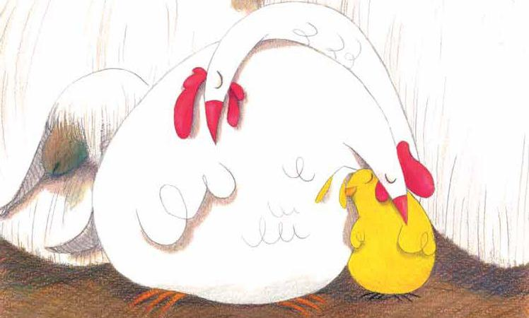 chick bedtime